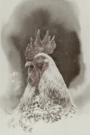 17阪急鶏